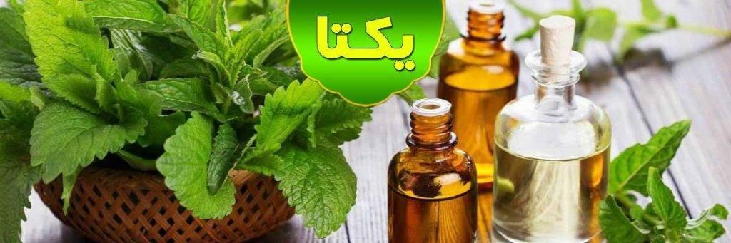 اصفهان رسانه